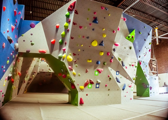 Edge Climbing Wall Manufacturers in Delhi