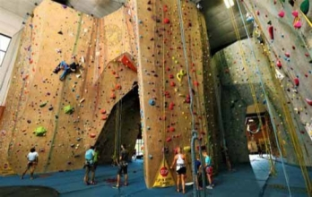 Climbing System For Adventure Park Manufacturers in Jammu And Kashmir