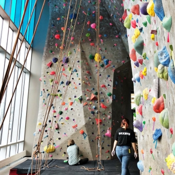 Rock Climbing Wall Manufacturers in Bihar Sharif