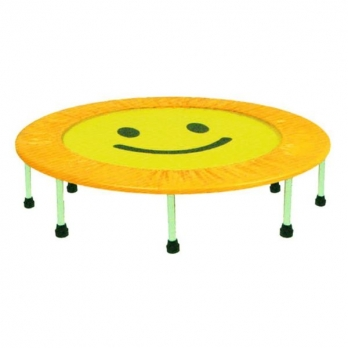 STANDARD MINI TRAMPOLINE Manufacturers in Delhi